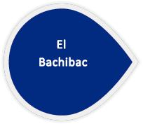 el-bachibac