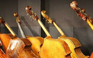 violons-site (Opti)