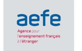 logo-aefe-site (Opti)