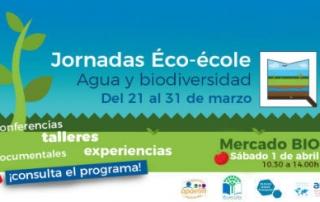 eco-ecole -opti