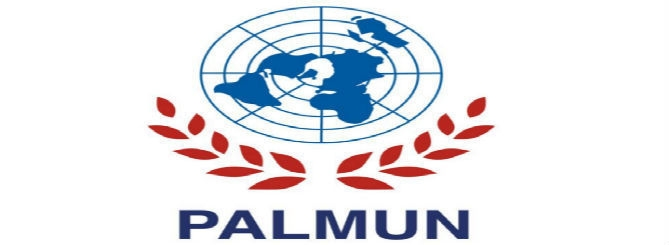 2018-palmun-site -opti